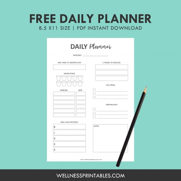 Free Daily Planner Insert