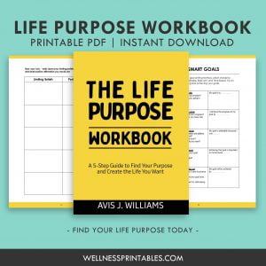 find your life purpose workbook